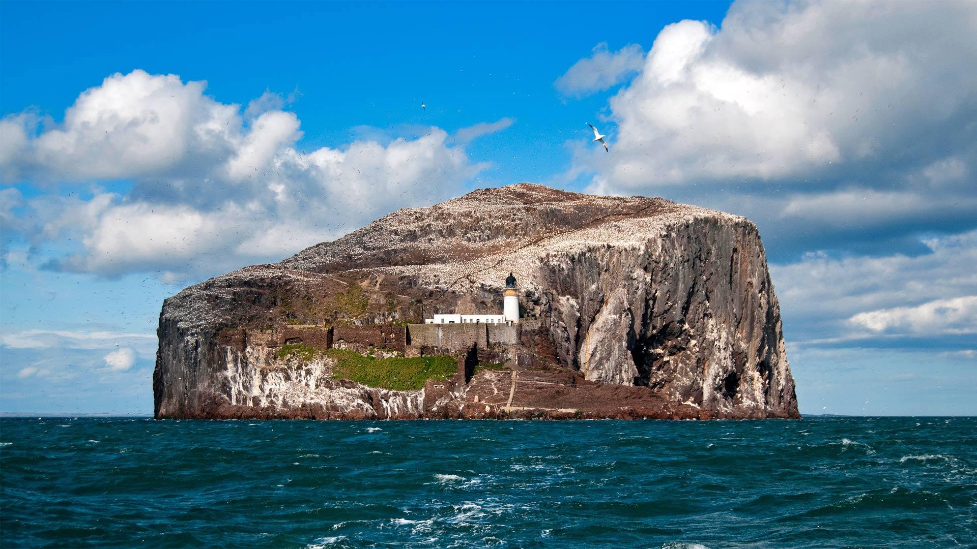 苏格兰福斯湾的巴斯岩